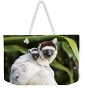 Verreauxs Sifaka With Baby Madagascar Weekender Tote Bag