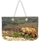 Very Light-colored Grizzly Bear In Moraine River In Katmai Nnp-ak Weekender Tote Bag