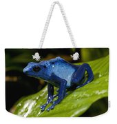 Very Tiny Blue Poison Dart Frog Weekender Tote Bag