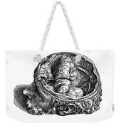 Vesalius: Olfactory Organs Weekender Tote Bag