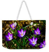 Vibrant Crocuses Weekender Tote Bag by Karol Livote