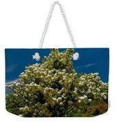 Viburnum Opulus Compactum Bush With White Flowers Weekender Tote Bag