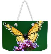 Viceroy Butterfly Square Weekender Tote Bag