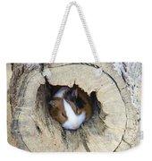 Vicious Animal Sleeping Weekender Tote Bag