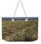 Vidalia Georgia Onion Fields Weekender Tote Bag