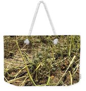 Vidalia Onion Seed Field - Georgia Weekender Tote Bag