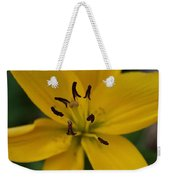 View From Above Weekender Tote Bag