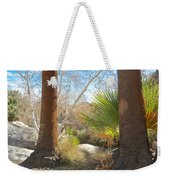 View From Creek Bed In Andreas Canyon In Indian Canyons-ca Weekender Tote Bag