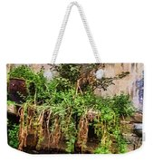 View From The Grand Canal China Weekender Tote Bag