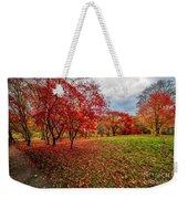 View Of Autumn Weekender Tote Bag