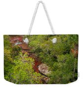 View Of Cano Cristales In Colombia Weekender Tote Bag