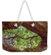 View Through Angel Oak Tree Weekender Tote Bag