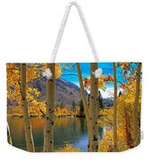 View Through The Aspens Weekender Tote Bag