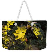 Vine Leaves At Sunset Weekender Tote Bag