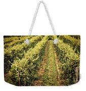 Vines Growing In Vineyard Weekender Tote Bag