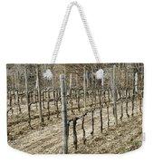 Vineyard In Early Spring Weekender Tote Bag