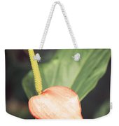 Vintage Anthurium Weekender Tote Bag