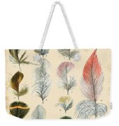 Vintage Feather Study-b Weekender Tote Bag