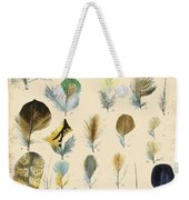 Vintage Feather Study-c Weekender Tote Bag