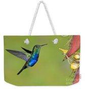 Violet-bellied Hummingbird Weekender Tote Bag