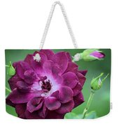 Violet Rose And Buds Weekender Tote Bag