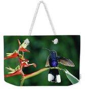 Violet Sabre-wing Hummingbird Weekender Tote Bag