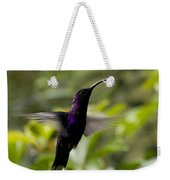 Violet Sabrewing At Cielito Sur Weekender Tote Bag