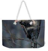 Virginia Opossum Weekender Tote Bag