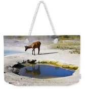 Visitor At West Thumb Basin Weekender Tote Bag