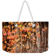 Vitaceae Family Ivy Wall Abstract Weekender Tote Bag