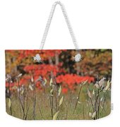 Wachusett Meadows 4 Weekender Tote Bag