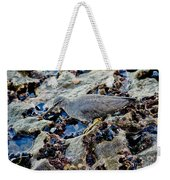 Wadering Tattler At Low Tide Weekender Tote Bag