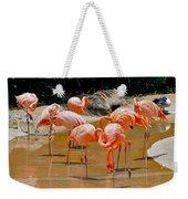 Waikiki Flamingos Weekender Tote Bag