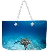 Turtle Soar Weekender Tote Bag