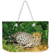 Waiting For Baby Cheetahs Weekender Tote Bag