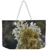 Waiting For Spring - Ice Storm - Closeup 2 Weekender Tote Bag