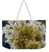 Waiting For Spring - Ice Storm - Closeup Weekender Tote Bag