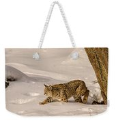 Walking Softly Weekender Tote Bag