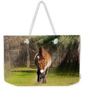 Walking Towards Me In Sunrays Weekender Tote Bag