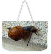 Wall Snail 1 Weekender Tote Bag