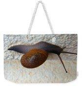 Wall Snail 2 Weekender Tote Bag