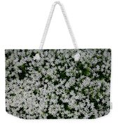 Wallflowers 2  Weekender Tote Bag