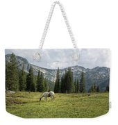 Wallowas - No. 2 Weekender Tote Bag
