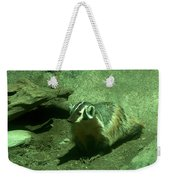Wandering Badger Weekender Tote Bag