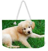 Warm Fuzzy Puppy Weekender Tote Bag by Christina Rollo