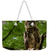 Warm Young Great Horned Owl Weekender Tote Bag