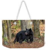 Wary Black Bear Weekender Tote Bag