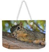 Wary Squirrel Weekender Tote Bag