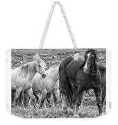 Wary Stallion Weekender Tote Bag