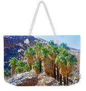 Washingtonian Fan Palm Grove Along Lower Palm Canyon Trail Near Palm Springs-california  Weekender Tote Bag